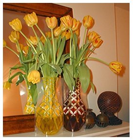 Tulips in floral arrangement